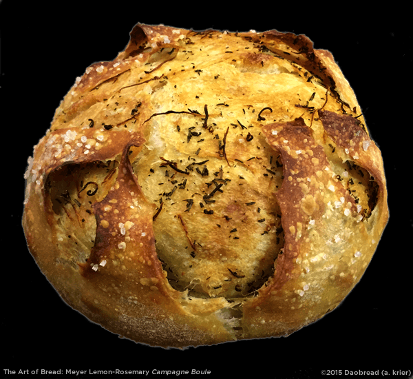 Meyer Lemon-Rosemary Campagne Boule (20150112)